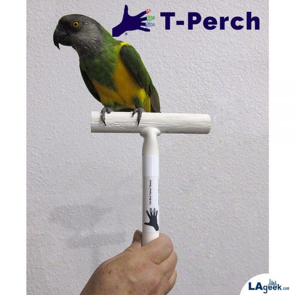 The Bird Trainer_T-Perch