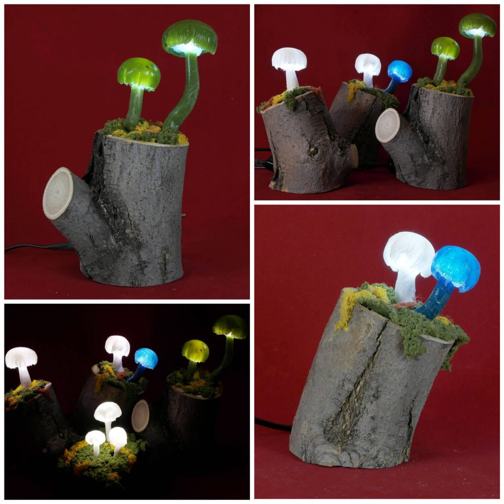 Mushrooms by Viejo